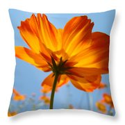Orange Floral Summer Flower Art Print Daisy Type Blue Sky Baslee Troutman Throw Pillow