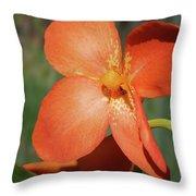 Orange Flower 1 Throw Pillow