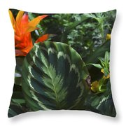 Orange Flower Longwood Gardens Throw Pillow