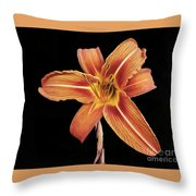 Orange,  Flower Throw Pillow