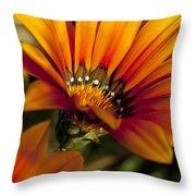 Orange Flower Print Throw Pillow