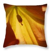 Orange Flower Stamen Throw Pillow