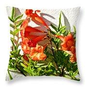 Orange Trumpet Flowers At Pilgrim Place In Claremont-california  Throw Pillow