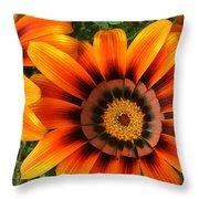 Orange Gazania Throw Pillow