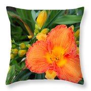 Orange Gladiola Flower And Buds Throw Pillow