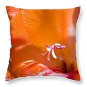Orange Gladiolus Throw Pillow