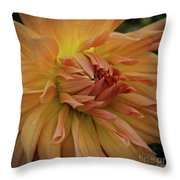 Orange Glow Throw Pillow by Patricia Strand