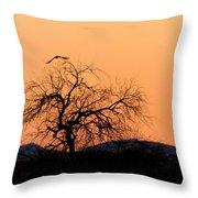 Orange Glow Sunset In The Desert Throw Pillow