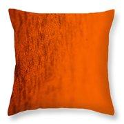Orange Gradient Throw Pillow