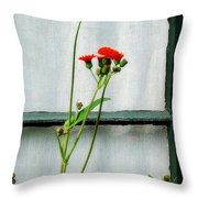 Orange Hawkweed Over Gray Muslin Throw Pillow