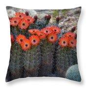 Orange Hedgehog Patch  Throw Pillow