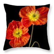 Orange Iceland Poppies Throw Pillow by Garry Gay