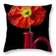 Orange Iceland Poppy In Red Pitcher Throw Pillow
