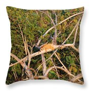 Orange Iguana  Throw Pillow