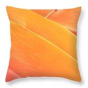 Orange Kayaks Throw Pillow by Brandon Tabiolo - Printscapes