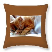 Orange Kitten Sleeping In Silk And Satin Throw Pillow