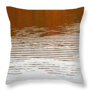 Reflections Of Fall Leaves And Sunlit Ripples On Jamaica Pond Throw Pillow
