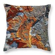Orange Lichen Throw Pillow
