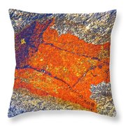 Orange Lichen Throw Pillow