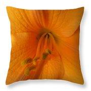Orange Lily 4 Throw Pillow
