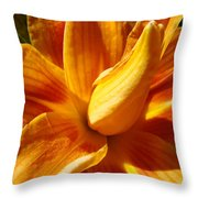 Orange Lily Flower Art Print Summer Lilies Baslee Throw Pillow
