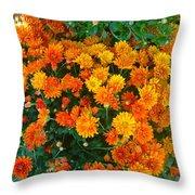 Orange Margarita Daisy Throw Pillow
