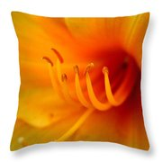 Orange Marmalade 2 Throw Pillow