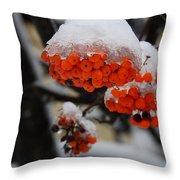 Orange Mountain Ash Berries Throw Pillow