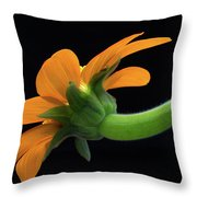 Orange On Black Throw Pillow