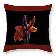 Orange On Black Throw Pillow