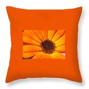 Orange Petal Throw Pillow