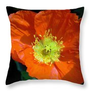 Orange Pop Photograph Throw Pillow