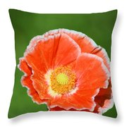Orange Poppy 2 Throw Pillow