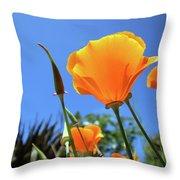 Orange Poppy Blue Sky Throw Pillow