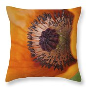 Orange Poppy With Texture Throw Pillow