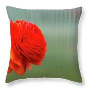 Orange Ranunculus Throw Pillow