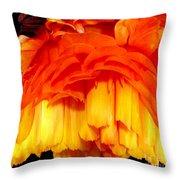 Orange Ranunculus Polar Coordinate Throw Pillow