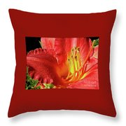 Orange-red Day Lily Throw Pillow