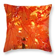 Orange Red Fall Leaves Autumn Tree Art Baslee Troutman Throw Pillow