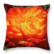 Orange Red Rose Flower Art Prints Giclee Baslee Troutman Throw Pillow