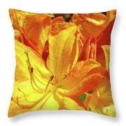 Orange Rhodies Flowers Art Rhododendron Baslee Troutman Throw Pillow