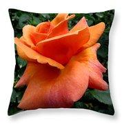 Orange Rose 1 Throw Pillow