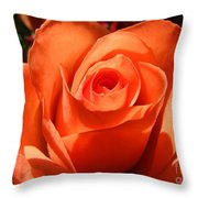 Orange Rose Photograph Throw Pillow