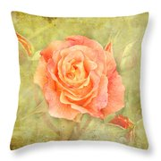 Orange Rose With Old Paint Texture Background Throw Pillow