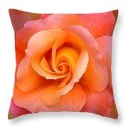 Orange Rosebud Highlight Throw Pillow