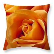 Orange Roses Throw Pillow by Garry Gay