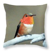 Orange Rufus Throw Pillow
