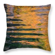 Orange Sherbert Throw Pillow by Donna Blackhall