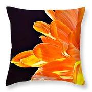Orange Sherbet Throw Pillow