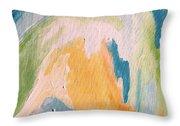 Orange Slush Throw Pillow